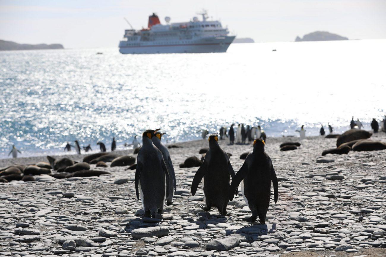 Antarctica-unsplash (10)