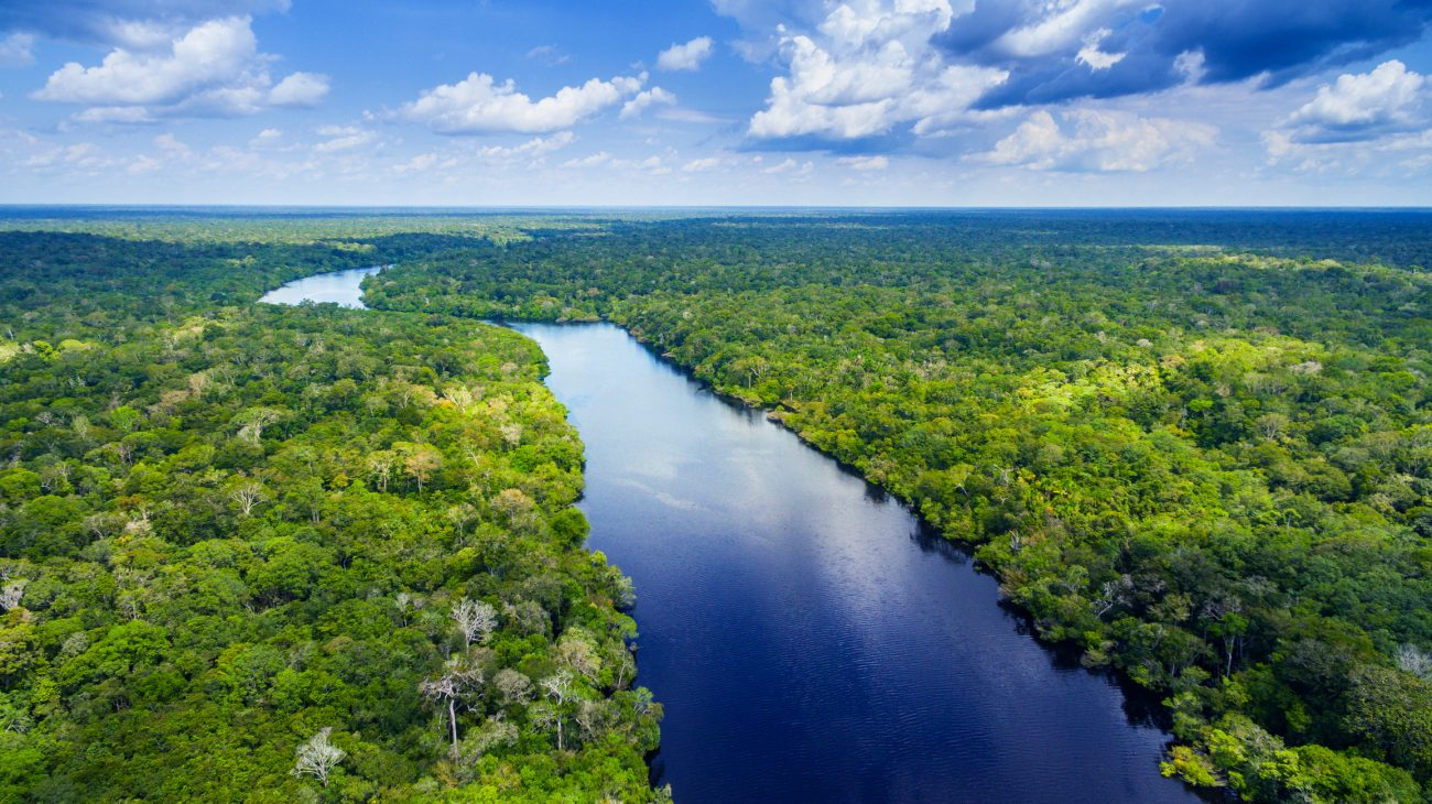 Cuyabeno Reserve, Amazonie