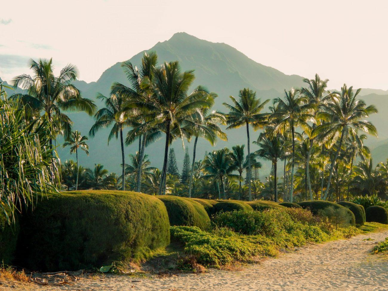 Hawaii-unsplash