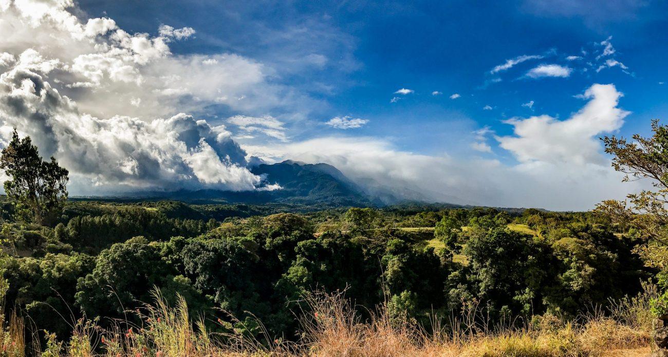 Deštný prales Chiriquí