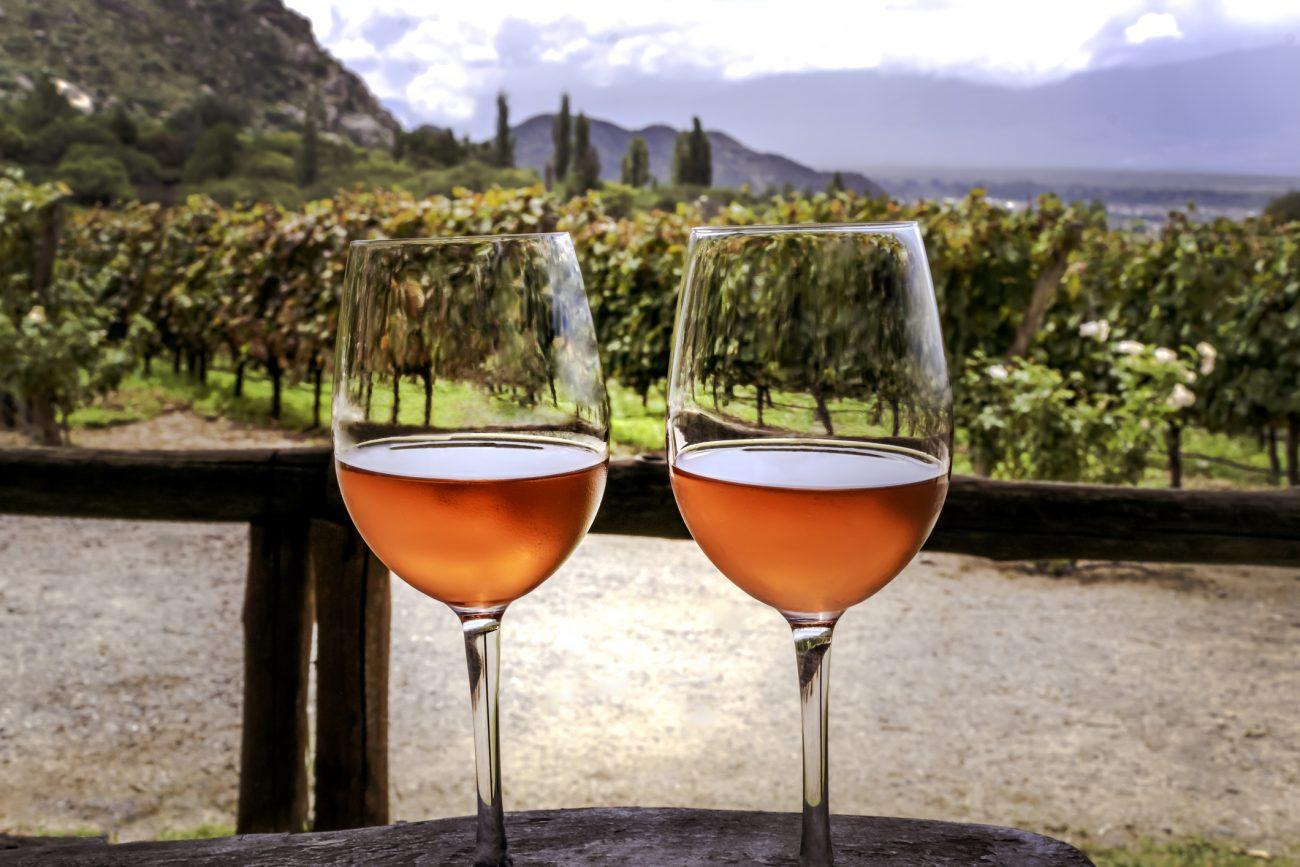Vinice Concha y Toro